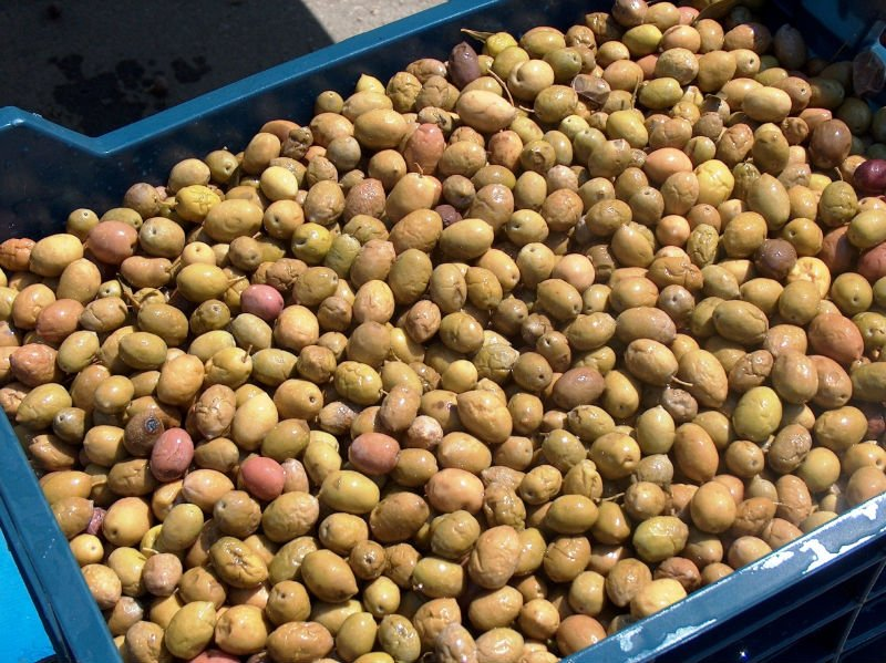 NATURAL OLIVES (READY FOR CONFIT)