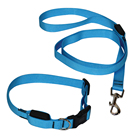 Blue Classic Outdoor Nylon Dog Collar And Leash Set