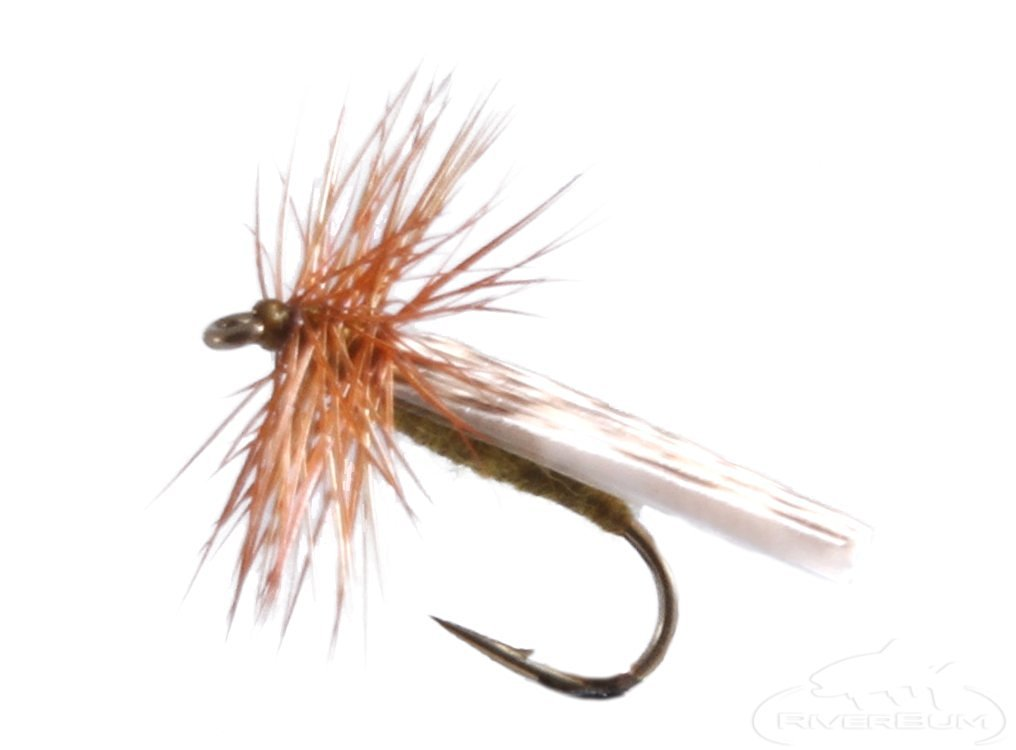 RiverBum Mottled Caddis, Olive Fishing Fly Mottled Caddis, Olive, Pack of 3