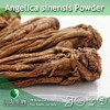 100% Natural Angelica sinensis Powder | Dong quai Powder | Female ginseng Powder for your good Health
