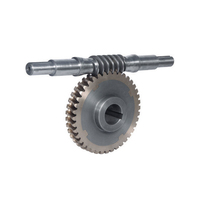 Gray Iron Worm Gear