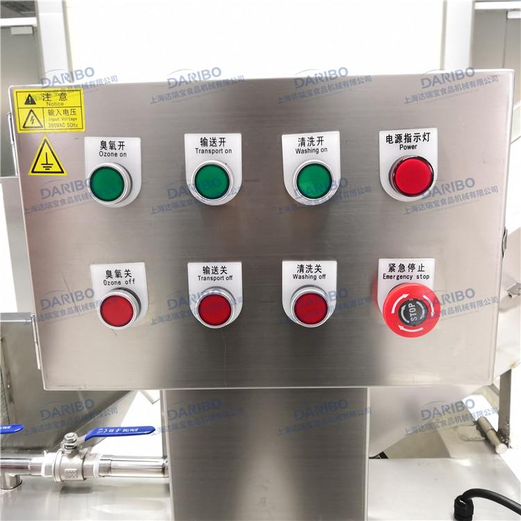 Bubble Type Potato Onion Washing Machine Ozone Tomato Cleaning Scallop Pepper Shallot Washer Machine