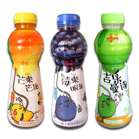 Private Label Fruit Juice Drink in PET bottle