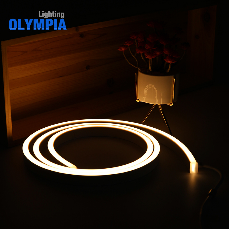Extreme Reliability Waterproof IP68 60Pcs LED/M SMD 5050 Flexible LED Strip 24V