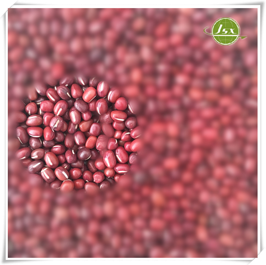 Jsx High Quality Small Red Beans Price