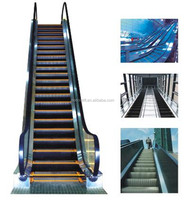 Stainless Steel Residential Small Home Escalator Cost