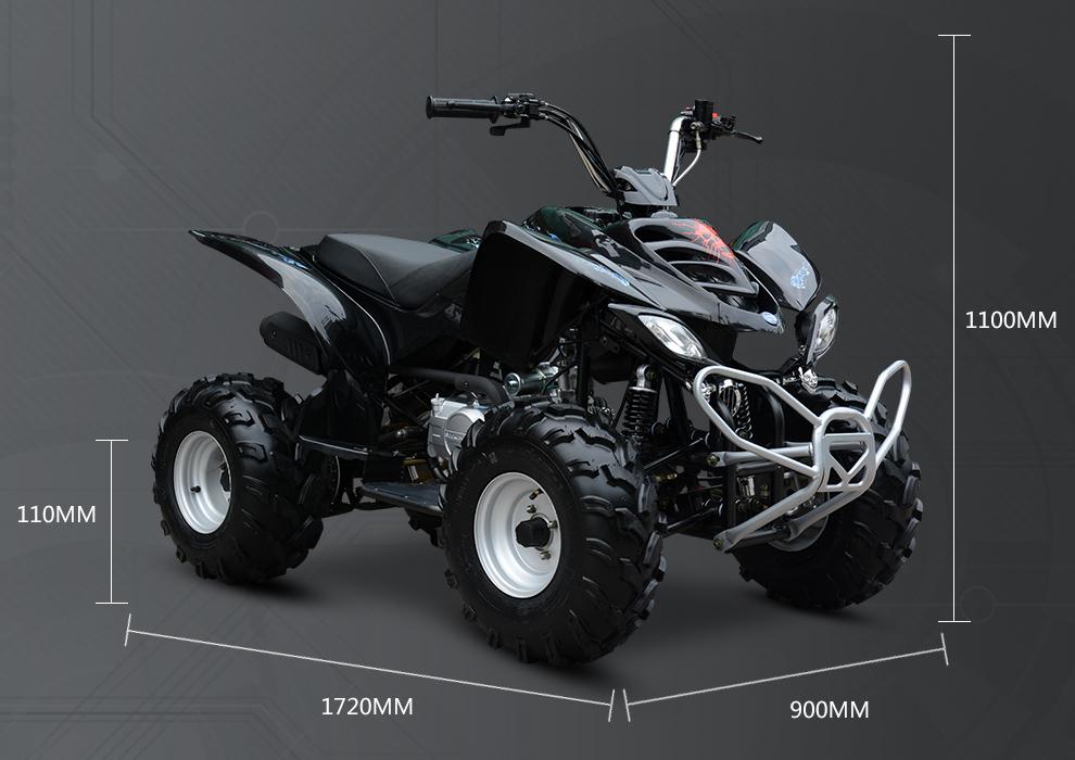 sp125 d 125cc cc all terrain vehicle adult quad bike buy. Black Bedroom Furniture Sets. Home Design Ideas