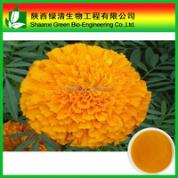 Natural plant extract Marigold flower lutein powder 90% HPLC