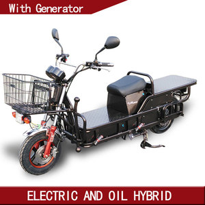 speedway 2 wheel stand up electric scooter with removable battery