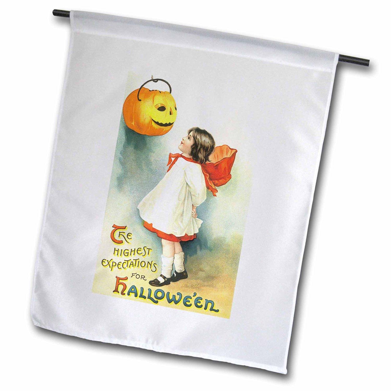 BLN Vintage Halloween - Vintage Halloween Cute Little Girl looking at a Trick or Treat Pumpkin - 18 x 27 inch Garden Flag (fl_126126_2)