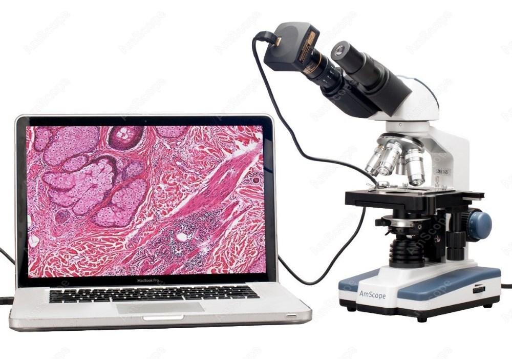 AmScope B120B-E Digital Siedentopf Binocular Compound Microscope Brightfield Abbe Condenser 40X-2000X Magnification LED Illumination Includes 0.3MP Camera and Software Double-Layer Mechanical Stage