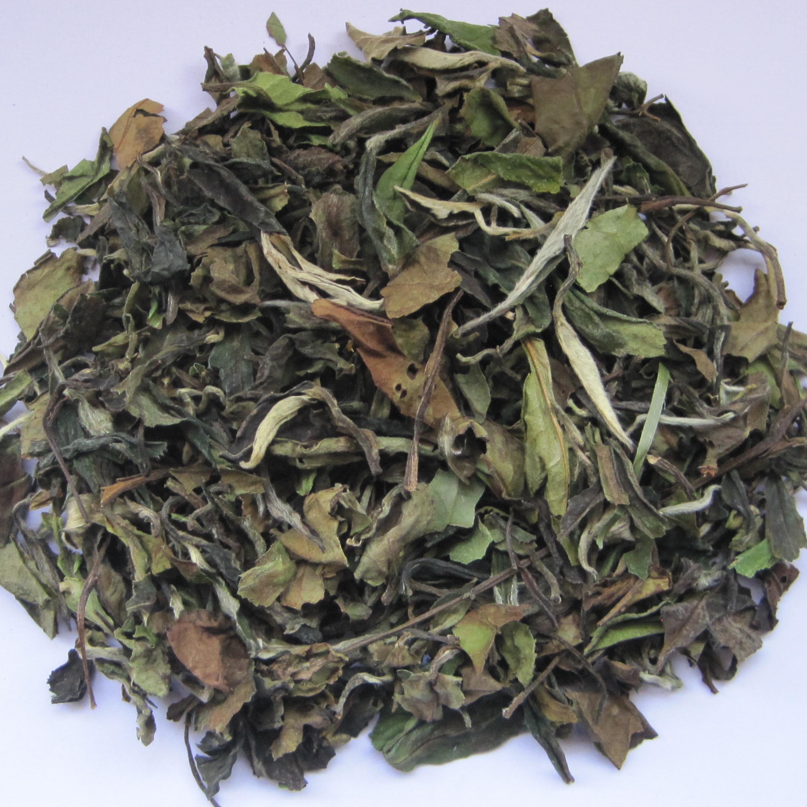 Chinese Eu compliant White tea price fujian White Peony tea - 4uTea   4uTea.com