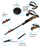 Carbon Fiber 3 Sections Anti- Shock Ultra light Collapsible Nordic Telescopic Walking Hiking Trekking Stick Poles