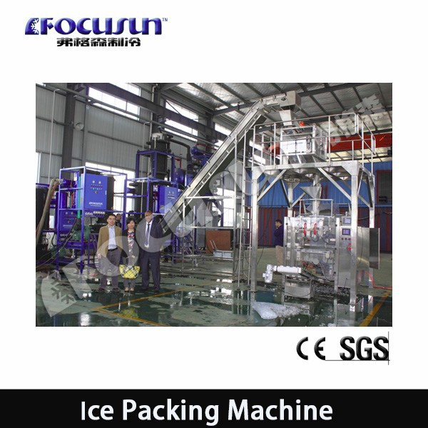 Full Automatic Ice Packing Machine/automatic packaging System