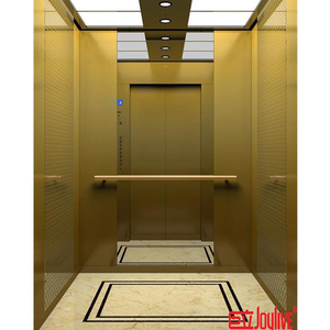 Residential Passenger Elevator/Lift/Car China Manufacturer with High Quality
