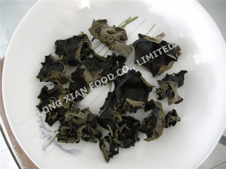 Agaric/Black Export