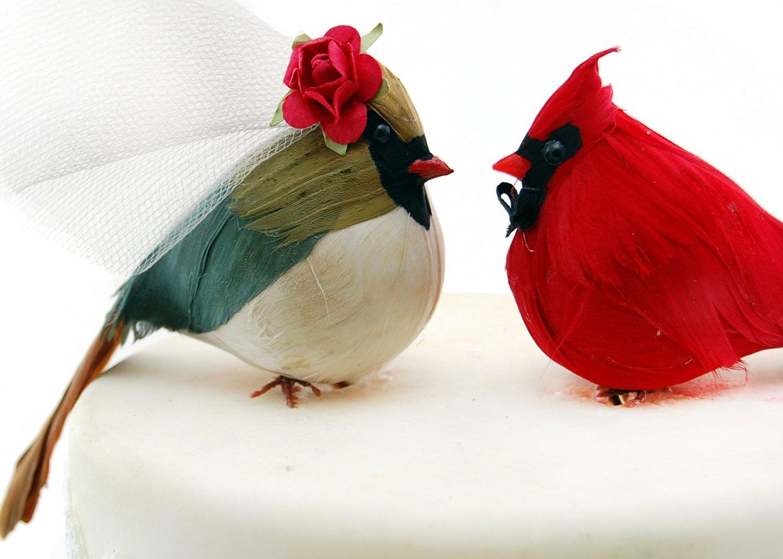 свадебные птицы картинки