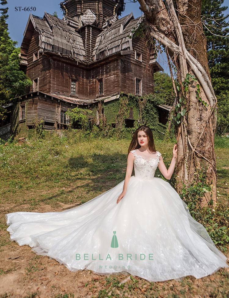 Latest Decent Wedding Dresses Gowns Bridal Dress Stani Ball Gown