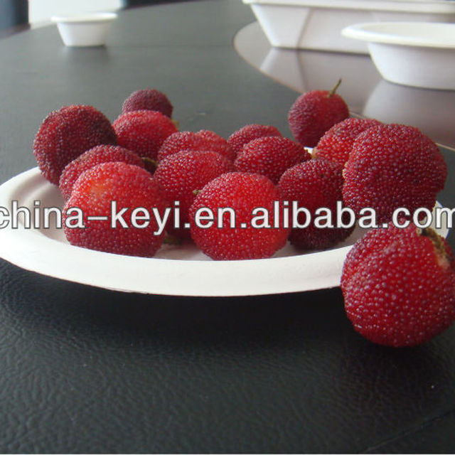 Chinese products wholesale polka dot paper plate & Buy Cheap China paper polka dot plates Products Find China paper ...