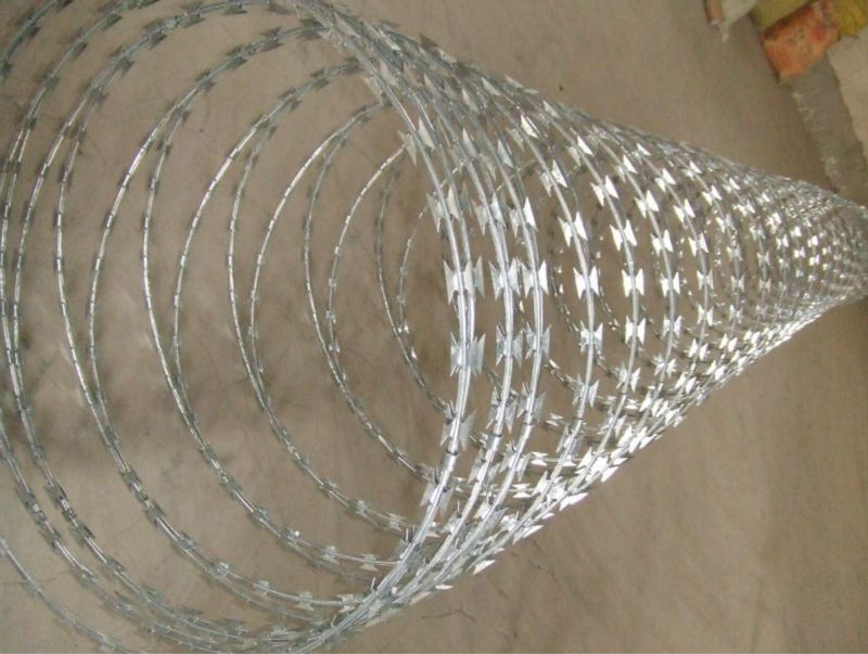 CBT-22 long thorn afraid razor wire for prison
