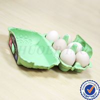 Green Recycled Egg Cartons