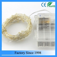 10M 100 LEDS Warm White LEDs Copper Wire 3AA Battery Powered Remote Control LED String Lights