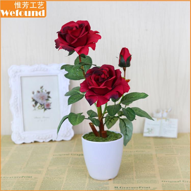 Gambar Bunga Mawar Dalam Pot Gambar Bunga