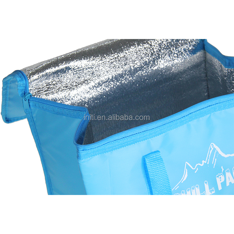 Disposable Cooler Bag For Frozen Food Supplieranufacturers At Alibaba