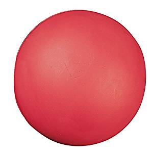CHAMPION SPORTS HIGH DENSITY COATED FOAM BALL 4IN (Set of 12)