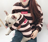 2019 Fashion Pet clothes Dog Match Outfits Matching Dog and Human Pet Clothes