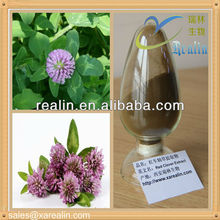 Factory PriceRed Clover/ Red Clover Flower Extract/Red Clover Extract