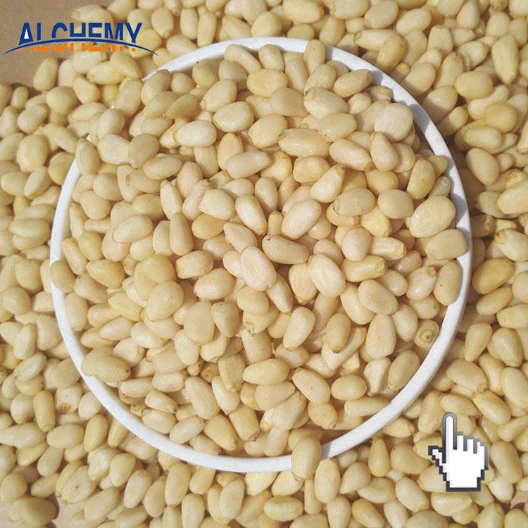 Pine Nuts with Wholesale Price from Alchemy Food