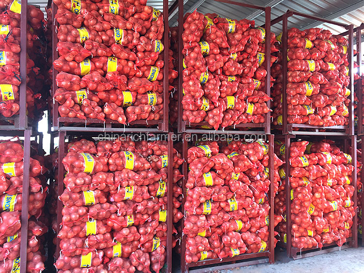 Fresh red market price red yellow onion prices