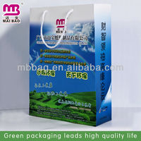 High quality company name printed laminated paper bag