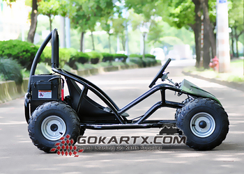 1000w fast electric go kart made in china buy 1000w electric go kart go kart 1000w 1000w buggy. Black Bedroom Furniture Sets. Home Design Ideas