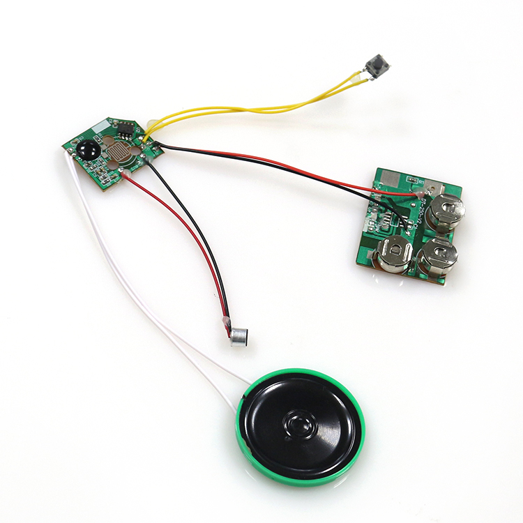 Custom programmable voice recording musical chip for greeting card