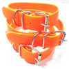 double buckle pvc personalized fluo dog collar