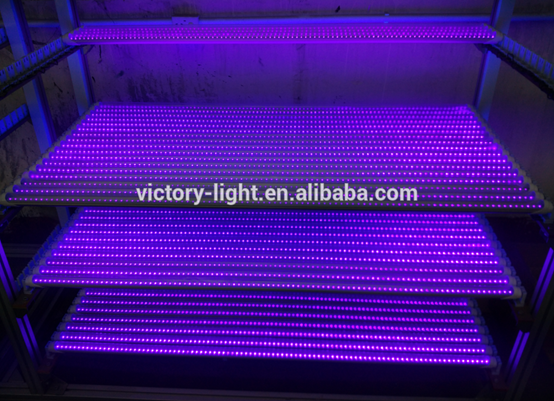 Warranty 2 Years 18w Led Grow Light Tube Plant Lamp Buy Tube Plant Lamp 18w Led Grow Light