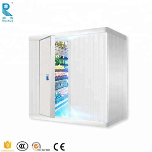 40 and 20 Feet Freezer Container/ Cold Room Container