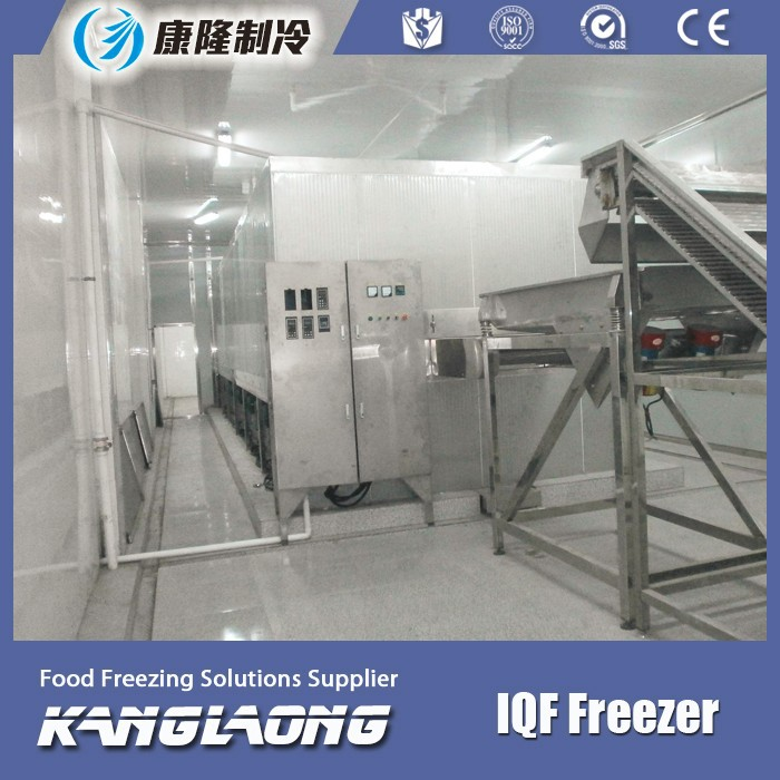 High Output Fluidized Bed IQF Freezer