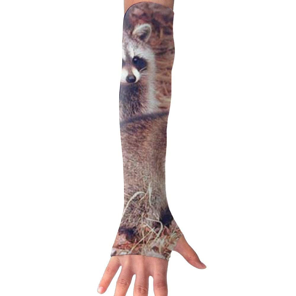 DCJHGN NEW Pair Of Racoon Wildlife Baby Animal UV Protection Cooling For Men Women Running Golf Cycling Driving Protective Gloves