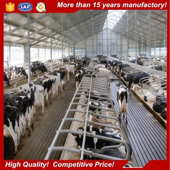 Poultry Cow Cattle Farm Shed Business In Marathi Language Design Plan