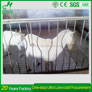 Super sales 600*600mm plastic goat farm floor in South American market
