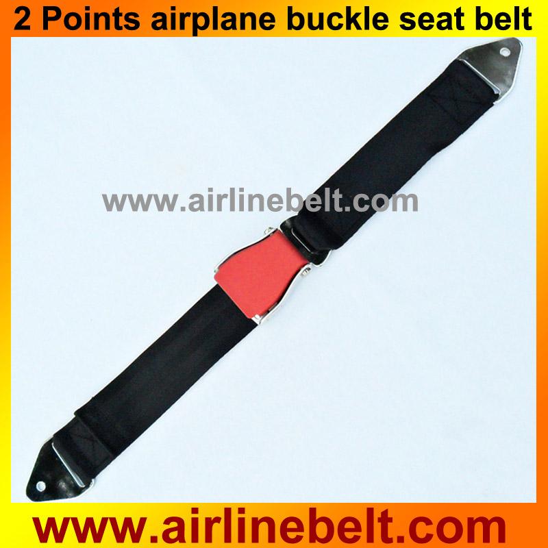 Seat belt thesis statement