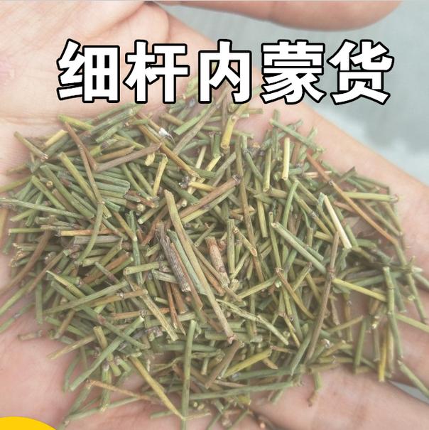 China Ma+huang+ephedra, China Ma+huang+ephedra Manufacturers