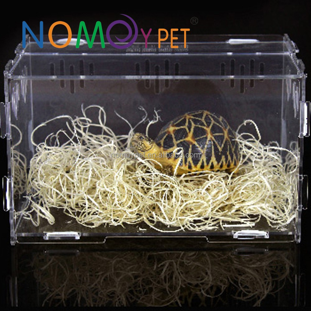 Nomo Acrylic Reptile Terrarium Habitat for juvenile and small arboreal tarantulas chameleon snails or other Larval Reptiles