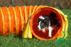 Pet dog tunnel
