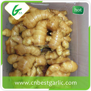 Cassia Ginger, Cassia Ginger Suppliers and Manufacturers at Alibaba com