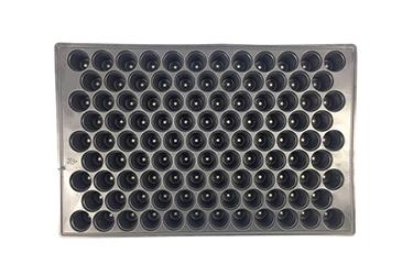 ถาดเพาะเมล็ดพลาสติกสีดำ 128 เซลล์คุณภาพดีสำหรับเรือนกระจก