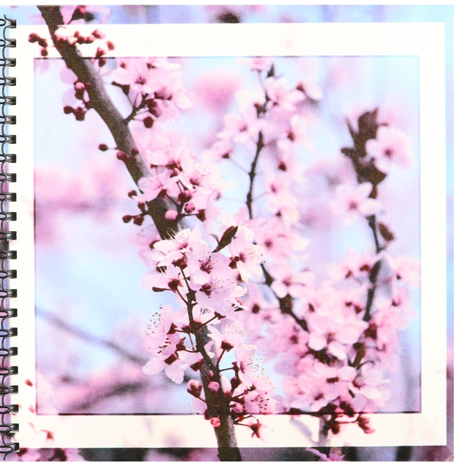 Cheap Cherry Blossom Drawing, find Cherry Blossom Drawing deals on ...